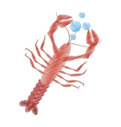 hand drawing lobster sealife top view bubbles vector image vector image