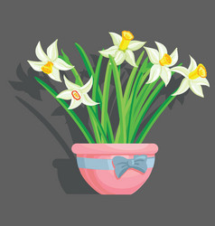 tulips grey background vector image