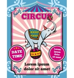 Circus carnival color vintage template vector image