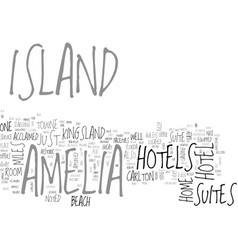 Amelia island florida text word cloud concept vector
