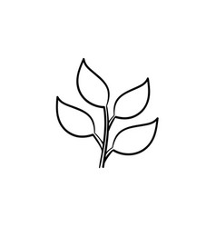 branch with leaves hand drawn sketch icon vector image