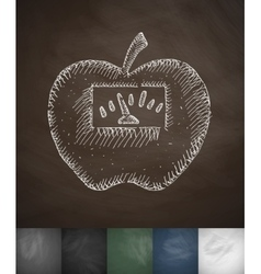 Scales apple icon Hand drawn vector