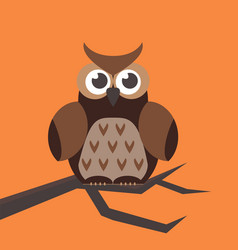 cute modern bright cartoon owl expression animal vector image