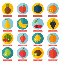 Fruits flat icon set Colorful template for cooking vector image
