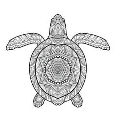 stylized underwater turtle vector image