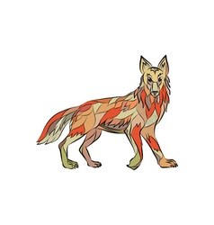 Coyote side isolated drawing vector