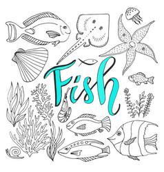 sketches fish set hand drawn marine set adult vector image