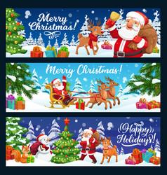 christmas tree gifts and santa on reindeer sleigh vector image