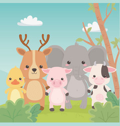 Cute and little animals in field characters vector