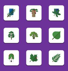 flat icon bio set of oaken baobab acacia leaf vector image