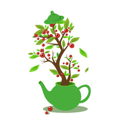 green teapot with inscription on vector image
