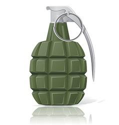 grenade 02 vector image