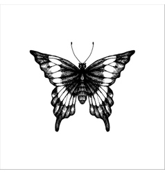 Machaon hand drawn butterfly vector