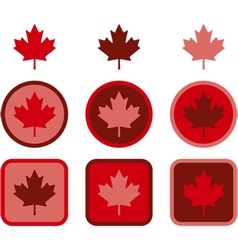 Maple leaf flat design vector image