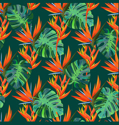 Seamless pattern with exotic plants summer dark vector