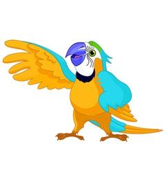cartoon parrot vector image vector image