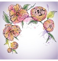 Violet background with watercolor peony flowers vector image vector image