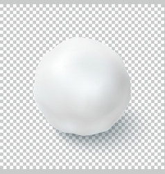 Realistic snow ball isolated on transparent vector image vector image