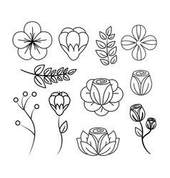 spring blossom icon image vector image