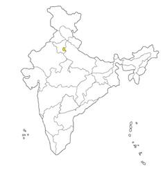 delhi vector image vector image