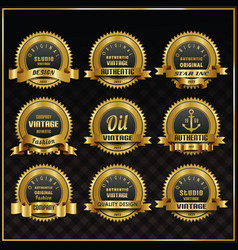 vintage retro labels symbols set vector image