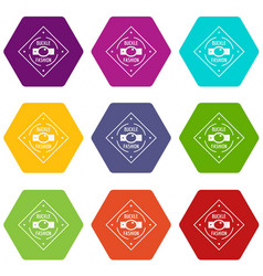 Buckle chrome icons set 9 vector