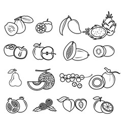 fruit icon set draw outline coloring on white vector image