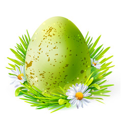 green egg with spots on grass vector image vector image