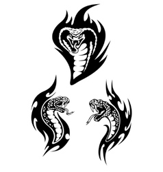 Hissing snakes heads with forked tongues vector