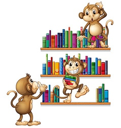 Monkeys and books vector image