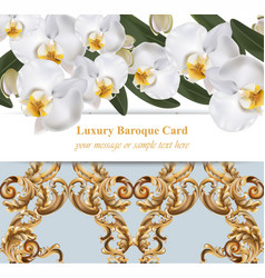 orchid flowers with ornaments card banner poster vector image