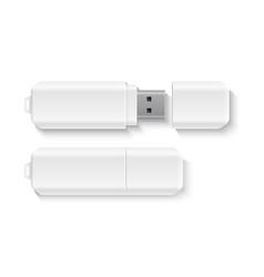 realistic flash drive data storage mockup vector image