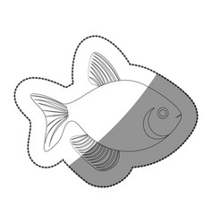sticker silhouette fish aquatic animal icon flat vector image