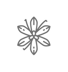 Vanilla saffron spice line icon vector