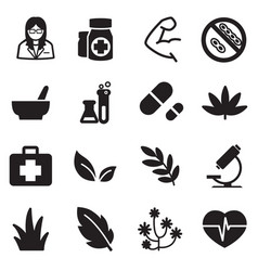 silhouette herb icons vector image vector image