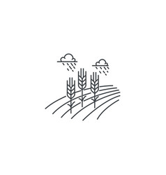 farm wheat line icon outline of vector image vector image