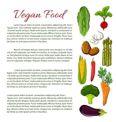Vegan food infographics poster with vegetables vector image vector image