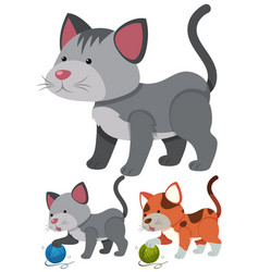 Cats playing with yarns vector