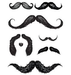 Hand drawn mustache set vector