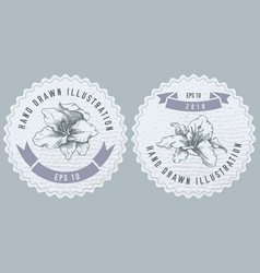 monochrome labels design with lily vector image