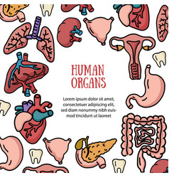 set of human internal organs for transplantation vector image