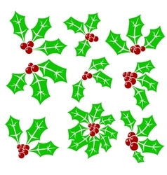 Set of Holly Berry Icons vector image vector image