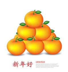 Chinese New Year Mandarin oranges vector image
