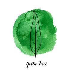 Leaf gum tree vector