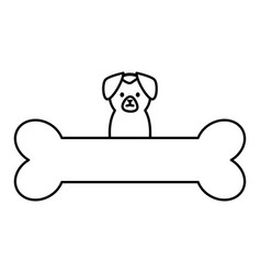 Little dog adorable with bone vector