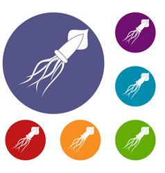 Squid icons set vector
