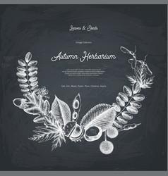 Autumn design card on chalkboard vector