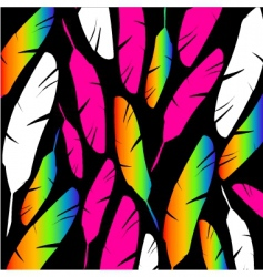 colored feathers on black background vector image