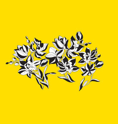 decorative orchid flowers design element vector image