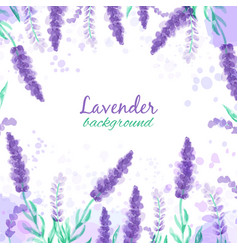 lavender background with flowers watercolor vector image